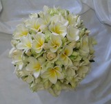 Wired wedding bouquet of ivory spray roses and frangipanis